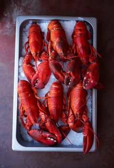 Food photography : lobsters - John Cullen Photographer - MACLEAN'S 50 BEST