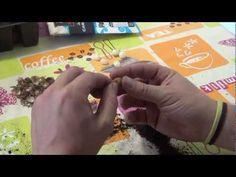 Semilleros Hijuelos Ajo Elefante || Huerto Organico || La Huertina De Toni