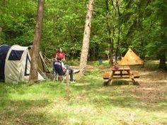 Camper, Vacation, Places, Travel, Caravan, Vacations, Viajes, Travel Trailers, Destinations