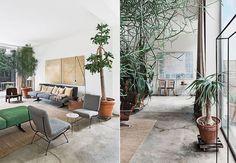 Oracle Fox, Sunday Sanctuary, prerequisites, industrial interior, green, cement, large, interior plants, giant cactus, mid century interior