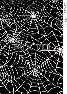 くもの糸 蜘蛛の糸 蜘蛛の巣 - 写真素材