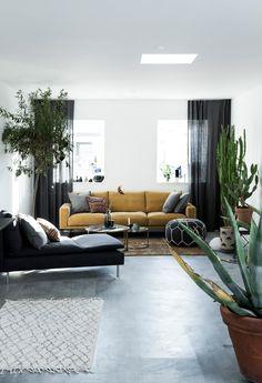 moderne stue med kaktuser og grønne planter