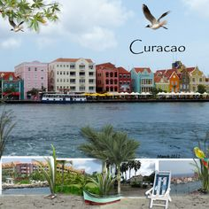 Curacao. My favourite pub.  The Iguana Cafe <<< @Angie Graf  We are going here for sure!!!