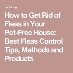 How to Get Rid of Fleas in Your Pet-Free House: Best Fleas Control Tips, Methods and Products