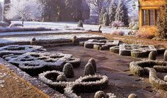 Winter box topiary Topiary, The Outsiders, Barn, Winter, Plants, Winter Time, Flora, Plant, Barns