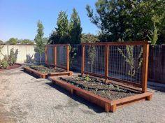 Raised Wood Garden w/ Trellis