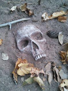 Realistic buried skull garden stones
