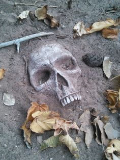 A spooky and macabre addition to your yard or garden, these stones are cast in high-quality gypsum from an original, life-sized, detailed sculpture. These skulls are hand-painted and weather-sealed for durability.