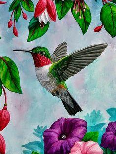 Birds Painting - Hummingbird Greeting Card 1 by Crista Forest Pretty Birds, Beautiful Birds, Crafts Beautiful, Painting & Drawing, Watercolor Paintings, Hummingbird Painting, Forest Art, Bird Drawings, Canvas Art