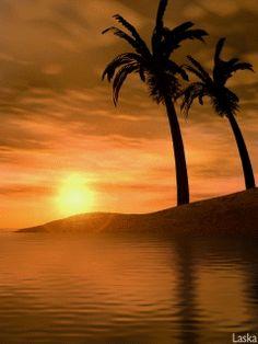 Анимация: Море, пальмы. из категории Природа в анимации
