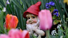 My Garden Home gnome