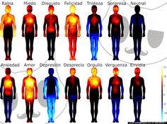 ¿En qué parte de tu cuerpo se 'sienten' las emociones? - Es Asombroso