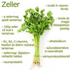 Mik a zeller hatásai? Edible Plants, Health Eating, Vegan Recipes Easy, Eating Well, Healthy Drinks, Food Hacks, Organic Gardening, Celery, Smoothies