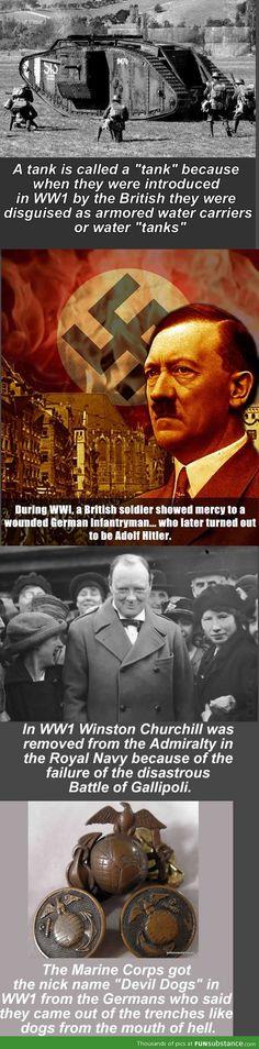 World War 1 Facts #history