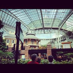 Atrium Awesomeness at Gaylord Opryland Resort in Nashville. Photo by chad_iosco • Instagram