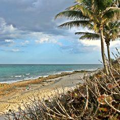 'Coral Cove' Jupiter Island, FL.