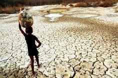 Genilson Monteiro Recife: 17 de Junho- Dia Mundial de Combate à Desertificaç...