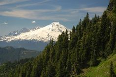 Sauk Mountain, North Cascades West Slope, 4.2 miles, 1190 ft. elevation gain. WTA Photo of Mt. Baker from the Sauk Mountain trail by Mike C.