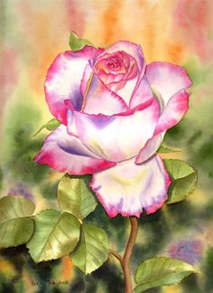 A wonderful rose - watercolor