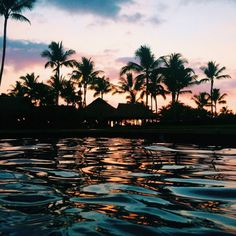MAUI Nights in the Hawaiian Islands, have a liquid excitement all their own.