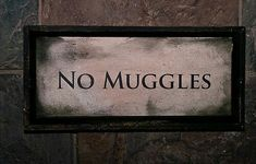 harry potter, muggles, and no muggles image Harry Potter Tumblr, Cumpleaños Harry Potter, Harry Potter Birthday, Harry Harry, Draco Malfoy, Slytherin Aesthetic, Harry Potter Aesthetic, Harry Potter Fiesta, Wallpaper Harry Potter
