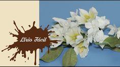 Flores de Açúcar - Lírio Fácil