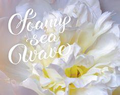 Jane Star Photography - Foamy Sea Wave-2 by Jane Star  #JaneStar #Peony #Flower #ArtForHome #InteriorDesign #HomeDecor  #Calligraphy #CalligraphicText #FineArtPrints