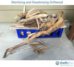 How to sterilize Driftwood & remove the salt from it.