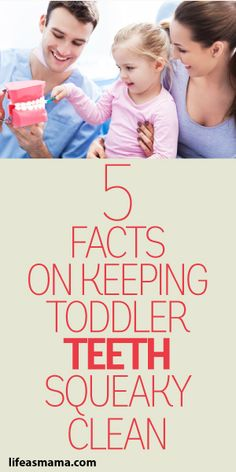 5 Facts On Keeping Toddler Teeth Squeaky Clean!