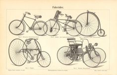 1894 Bicycles Tricycles Motorbicycle from the 19th Century