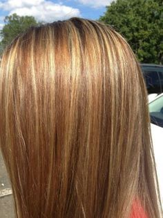 Blonde light brown and carmel lowlights