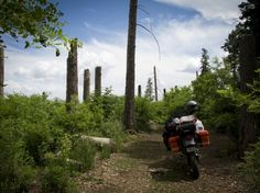 the motorcycle: KLR650 « alison's wanderland