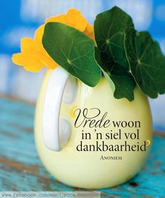 Vrede woon in 'n siel vol dankbaarheid Afrikaanse Quotes, The Secret Book, Happy Relationships, Day Wishes, Printable Quotes, Religious Quotes, I Am Grateful, Inspirational Thoughts, Happy Thoughts