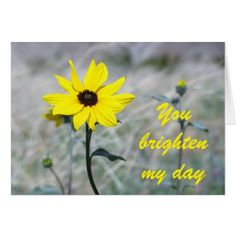 Brighten my day with Dune Sunflower Card - flowers floral flower design unique style