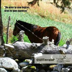 """No eres lo que logras, eres lo que superas "" #AllTerrainPeopleVenezuela  #venezuelatequiero #life #love #kayak #skate #rutas #extremo #parapente #quehaceshoyporvenezuela #naturaleza #allterrainpeople #paraísoterrenal #gopro #lucha #paisajes #igersvenezuela #trekking #sosvenezuela #venezuelasomostodos #justicia #noalmaltratoanimal #prayforvenezuela #adelantevenezuela"
