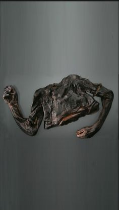 alien female corpse discovered in sibera - 236×418