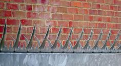 Cobra-Spike security topping (also know as Razor Spike) is a Secured by Design accredited product designed for use on the tops of fences, gates or walls #security #spike #fencing