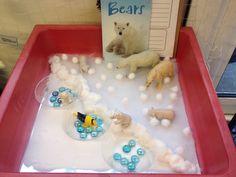 Small world - North Pole (polar bears)