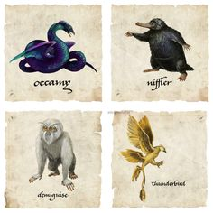 """Fantastic Beats"" Creatures I need a niffler. Estilo Harry Potter, Mundo Harry Potter, Harry Potter Universal, Harry Potter Fandom, Harry Potter World, The Beast, Hogwarts, Yer A Wizard Harry, Fantastic Beasts And Where"