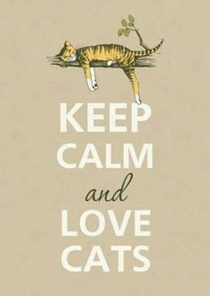 Keep calm and love cats.  This is why me and Harry are purrfect for eachother:)