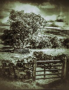 Yorkshire Moors Ed Juon