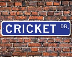 Cricket, Cricket Gift, Cricket Sign, Cricket decor, Cricket expert, Cricket lover, insect family, Custom Street Sign, Quality Metal Sign