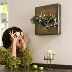 Los cuadros vegetales que adornarán nuestras casas