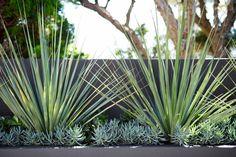 Caringbah Landscape Design by Secret Gardens - Sydney Landscape Architects