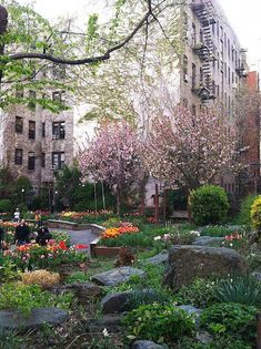Fox Residential will help you find a dream home in your favorite neighborhood! The West Side Community Garden, Upper West Side, New York. Beautiful World, Beautiful Places, Empire State Of Mind, I Love Nyc, Concrete Jungle, Destinations, Adventure Is Out There, Tulips, New York City