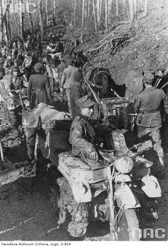 Kettenkrad. in the Caucasus 1942