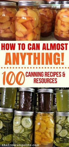 Do you have a bountiful garden? Check out these home canning recipes and resources so that you know exactly how to preserve all that harvest! Food Preservation Home Canning Pressure Canning Water Bath Canning How to Can at Home Home Canning Recipes, Canning Tips, Cooking Recipes, Pressure Canning Recipes, Budget Cooking, Garden Canning Ideas, Easy Canning, Canning Salsa, Oven Canning