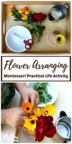Montessori practical life activities are designed to help children develop logical thought and independence. Each step of this flower arranging Montessori practical life activity for kids (picking flowers, pouring water, cutting flowers, arranging flowers Montessori Trays, Montessori Homeschool, Montessori Classroom, Montessori Toddler, Montessori Materials, Montessori Activities, Online Homeschooling, Toddler Classroom, Montessori Elementary