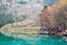 Five Flowers Lake in the Jiuzhaigou National Park, China.