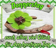 Donnerstag Cali, Sweet, Have A Good Night, Morning Sayings, Special People, Funny Stuff, Candy